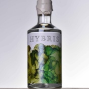 HYBRIS Take 1 – Eksperimenterende Dansk gin